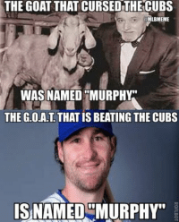 THE GOAT THAT CURSED THE CUBS  @MLBMEME  WAS NAMED MURPHY  THE G.O.A.T THAT IS BEATING THE CUBS  IS NAMED MURPHY The Goat that cursed the #Cubs was named... Murphy?Coincidence?  #Mets.  h/t @Joelsherman1