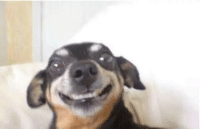 When ur stressed out but you play it cool: When ur stressed out but you play it cool