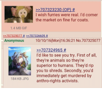 Animals, Dank, and Gif: 707323230 (OP)  I wish furries were real. I'd corner  the market on fine fur coats.  1.4 MB GIF  707325077 707326609  Anonymous 10/10/16 (Mon) 16:36:21 No.707325077  707324965  I'd like to see you try. First of all,  they're animals so they're  superior to humans. They'd rip  you to shreds. Secondly, you'd  immediately get murdered by  184 KB JPG  anthro-rights activists I'd like to see you try.