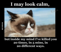 Grumpy Cat, Time, and Mind: I may look calm,  but inside my mind I've killed you  20 times, in 5 mins, in  20 different ways. What are you going to do about it!? tongue emoticon