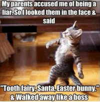 "Bunnies, Easter, and Parents: My parents accused me of being a  liar Sollooked them in the face &  Said  ""Tooth fairy  Santa Easter bunny.o  Walked away like aboss  & tongue emoticon"