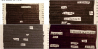 """Ed, Edd N Eddy, Funny, and Love: Sarah  @Swifties Unite13  We did blackout poetry in class today  and I fell absolutely in love with it. Here  are some of mine  ly f  all we've got  Ver  tha  ple  ter  is  """"I'  wh  to  knowledge  riel  la h  Zo  sel  ed  19  destruction.  IN  al I LOVE THIS"""