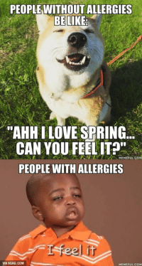 People w-o allergies be like...: PEOPLEWITHOUT ALLERGIES  BE LIKE  AHH LOVE SPRING...  CAN YOU FEEL IT  NEMEFULCoM  PEOPLE WITH ALLERGIES  feel it  VIA 9GAG.COM  MEMEFULCOM People w-o allergies be like...