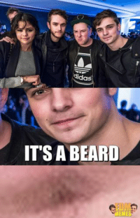 BREAKING NEWS!!! Martin Garrix grew a beard: Adidas  IT'S A BEARD BREAKING NEWS!!! Martin Garrix grew a beard