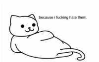 When I don't like someone and somebody asks me why:: because i fucking hate them. When I don't like someone and somebody asks me why: