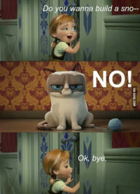 Grumpy Cat, Wanna, and Bye: Do you wanna build a sno--  NO  Ok, bye No.
