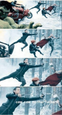Hawkeye can be such a show-off... ~MadTitan~: Cal  caw motherfuckers Hawkeye can be such a show-off... ~MadTitan~
