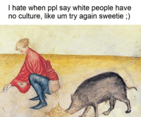 I Hate People Meme: I hate when ppl say white people have  no culture, like um try again sweetie