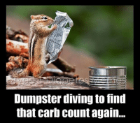 Type-1 Diabetes, Captioned, and Counting: Dumpster diving to find  that carb Count again. Congrats to caption contest winner Jennifer Gaytan!