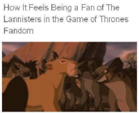 Game of Thrones Memes: How lit Feels Being a Fan of The  Lannisters in the Game of Thrones  Fandom Game of Thrones Memes