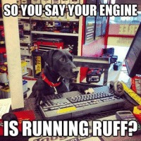 I have no idea what I'm doing. Car memes: SO YOU SAY YOUR ENGINE  IS RUNNING RUFF? I have no idea what I'm doing. Car memes