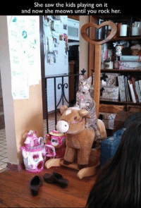 Grumpy Cat: She saw the kids playing on it  and now she meows until you  rock her.