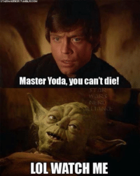 Master Yoda you can't die !! ‪#‎Ozmin‬: STARWARRORTUMBURCOM  Master Yoda, you can't die!  LOL WATCH ME Master Yoda you can't die !! ‪#‎Ozmin‬
