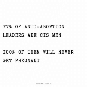 Abortion: 77% OF ANTI-ABORTION  LEADERS ARE CIS MEN  I00% OF THEM WILL NEVER  GET PREGNANT  @FEMESTELLA