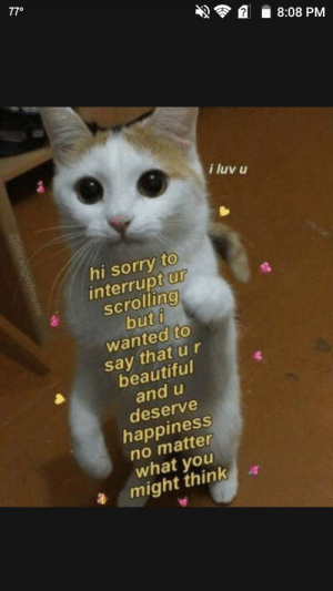 Beautiful, Sorry, and Good: 770  8:08 PM  i luv u  hi sorry to  interrupt ur  scrolling  but i  wanted to  say that u r  beautiful  and u  deserve  happiness  no matter  what you  might think Have a good day/night random redditor via /r/wholesomememes https://ift.tt/2AyIOdF