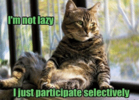 im not lazy: I'm not lazy  I just participate selectively