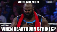 Sports, Wrestling, and World Wrestling Entertainment: WHERE WILL YOU BE  Sky SPORTS 3HD  WWENOC  STUNG  WHEN HEARTBURN STRIKESP