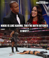 Bitch, Facebook, and Wrestling: FACEBOOK COMM  WWENOC  NIKKI IS LIKE KARMA, THEYRE BOTH BITCHES  U WOT?