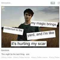 { funnytumblr textposts funnytextpost tumblr funnytumblrpost tumblrfunny followme tumblrfunny textpost tumblrpost haha}: 780  linksey love  my magic brings  voldemort to the  yard, and i'm like  it's hurting my scar  BAHAHA.  This might be the best thing, ever.  #Harry Potter Harry Potter humor Harry Potter meme Harry Potter { funnytumblr textposts funnytextpost tumblr funnytumblrpost tumblrfunny followme tumblrfunny textpost tumblrpost haha}