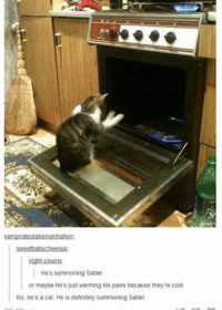 Cats, Definitely, and Funny: vampiratestakemanhatten  weetbabycheesus  night-clowns.  He's summoning Satan  or maybe he's just warming his paws because they re cold  No, he's a cat. He is definitely summoning Satan. ‪#‎theworstoftumblr‬