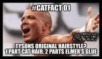 RECATFACTOT  BREAKING  KAYFABE  MEMES  TYSONS ORIGINAL HAIRSTYLE  1 PART CATHAIR, 2 PARTS ELMERES GLUE It's a ‪#‎CatFact‬! (Possibly a new series, lol!) grin emoticon