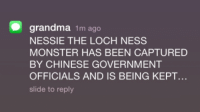 loch ness monster: grandma  1m ago  NESSIE THE LOCH NESS  MONSTER HAS BEEN CAPTURED  BY CHINESE GOVERNMENT  OFFICIALS AND IS BEING KEPT  slide to reply