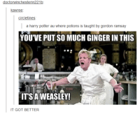 #theworstoftumblr: doctorWinchesterin221b  kawree  circle times  a harry potter au where potions is taught by gordon ramsay  YOU'VE PUT SO MUCH GINGER IN THIS  ITS A WEASLEY!  IT GOT BETTER #theworstoftumblr
