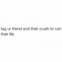 """Be Like, Crush, and Friends: tag ur friend and their crush to ruin  their life @violetbens0n @brockohurn 😜 boom I sure as hell ain't scared of telling a guy I like that I wanna sit on his face, obvi via text tho in case he rejects me so then I could be like """"LOL wrong person!"""" Or """"omg my turtle accidentally texted that"""""""