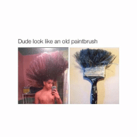 Dude, Girl Memes, and Old: Dude look like an old paintbrush 😍😍