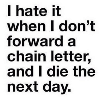 thestruggle: I hate it  when I don't  forward a  chain letter.  and I die the  next day. thestruggle