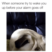 Muhfuckers get murked over shit like this, this aint a fuckin game: When someone try to wake you  up before your alarm goes off Muhfuckers get murked over shit like this, this aint a fuckin game