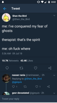 Me irl: 8:02  Tweet  Shen the Bird  @Shen_the_Bird  me: l've conquered my fear of  ghosts  therapist: that's the spirit  me: oh fuck where  5:36 AM 09 Jul 18  10.7K Retweets 43.4K Likes  nasser rania @raninasser2h  Replying to @Shen the_Bird  @gjequis  geor devastated @gjequis 2h  Tweet your reply Me irl
