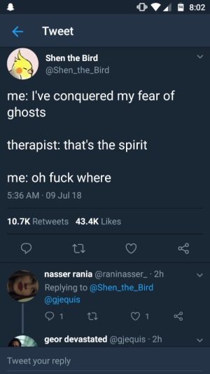 Me irl by 123td1234 FOLLOW HERE 4 MORE MEMES.: 8:02  Tweet  Shen the Bird  @Shen_the_Bird  me: l've conquered my fear of  ghosts  therapist: that's the spirit  me: oh fuck where  5:36 AM 09 Jul 18  10.7K Retweets 43.4K Likes  nasser rania @raninasser2h  Replying to @Shen the_Bird  @gjequis  geor devastated @gjequis 2h  Tweet your reply Me irl by 123td1234 FOLLOW HERE 4 MORE MEMES.