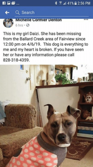 Friends, Memes, and Lost: 8 1  41%  2:56 PM  Search  chelle Cormier Denton  6 hrs  This is my girl Daizi. She has been missing  from the Ballard Creek area of Fairview since  12:00 pm on 4/6/19. This dog is everything to  me and my heart is broken. If you have seen  her or have any information please call  828-318-4359. FAIRVIEW, NC (BUNCOMBE CO.)-- LOST DOG  This is in Fairview Area of Western NC...she is a friend's dog that's missing.