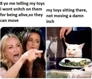 i aint no snitch: 8 yo me telling my toys  i wont snitch on them my toys sitting there,  for being alive,so they not moving a damn  can move  inch i aint no snitch
