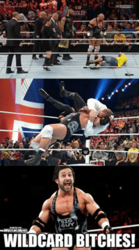 Bitch, Wrestling, and World Wrestling Entertainment: BIG  WILDCARD BITCHES! Because any time I can use an Always Sunny reference, it's a good day. WILDCARD BITCHES!