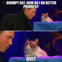 Cats, Funny, and Meme: GRUMPY CAT, HOW DO IDO BETTER  PROMOS?  TIONALLY FUNNY WRESTRING MET MENTS  QUIT These segments tonight are the worst. No more grumpy cat memes now, I promise. ‪#‎y2jay‬