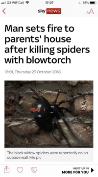memehumor:  Pretty sure we all know someone who could do this.: 81 02 WiFiCall  17:07  81%  sky  news  Man sets fire to  parents' house  after killing spiders  with blowtorch  16:01, Thursday 25 October 2018  The black widow spiders were reportedly on an  outside wall. File pic  NEXT UP IN  MORE FOR YOu memehumor:  Pretty sure we all know someone who could do this.