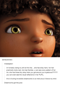 ‪#‎TheWorstOfTumblr‬: semiautomatix  misses peon:  im honestly losing my shit at this like  she has stray hairs. her hair  practically looks real. she has freckles. u can see every pattern of her  iris. she has those tiny stray hairs you get around your eyebrows??????  you can even see the visual reflections in her PUPIL.  this is fucking incredible dreamworks is so meticulous it blows my mind  Dreamworks got the juice ‪#‎TheWorstOfTumblr‬