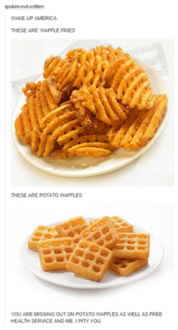 America, Funny, and Tumblr: en  WAKE UP AMERICA.  THESE ARE WAFFLE FRIES  THESE ARE POTATO WAFFLES  YOU ARE MISSING OUT ON POTATOWAFFLES AS WELL AS FREE  HEALTH SERVICE AND ME. PITY YOU.