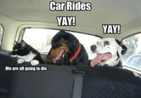 We Are All: Car Rides  YAY!  We are all going to die.  YAY!