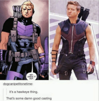 HEY,  CHECK IT  OUT  dogcanipetitonetime:  it's a hawkeye thing.  That's some damn good casting Like our new page Star Wars Memes!