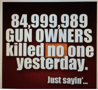 Memes, 🤖, and Gun: 84,999989  GUN OWNERS  killed no one  yesterday,  Just sayin'.. Yep!
