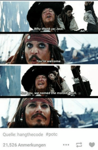 #TheWorstOfTumblr: Why thank ye Jack  You're welcome.  Not you, we named the monkey Jack.  Quelle: hangthecode #potc  21,526 Anmerkungen #TheWorstOfTumblr