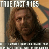 Game of Thrones Memes: TRUE FACT 185  AFTER FILMING NED STARK'S DEATH SCENE, SEAN  BEAN PLAYED FOOTBALL WITH HISREPLICA HEAD Game of Thrones Memes
