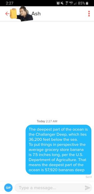 Her bio said she was looking for someone who could talk to her about deep shit. As a Redditor, I responded the only way I knew how: 85%  2:27  Ash  Today 2:27 AM  The deepest part of the ocean is  the Challanger Deep, which lies  36,200 feet below the sea.  To put things in perspective the  average grocery store banana  is 7.5 inches long, per the U.S.  Department of Agriculture. That  means the deepest part of the  ocean is 57,920 bananas deep  Sent  Type a message...  GIF Her bio said she was looking for someone who could talk to her about deep shit. As a Redditor, I responded the only way I knew how