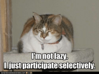 im not lazy: Im not lazy  just participate selectively.