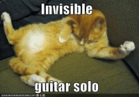cat meme: Invisible  guitar Solo  ICANHASCHEEZEURGER COMT