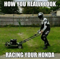 Lol: HOW YOU REALMLOOK.  RACING YOUR HONDA Lol