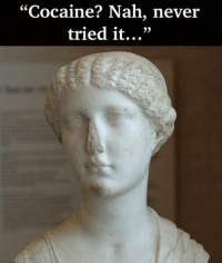 "Made by Rough Roman Memes: ""Cocaine? Nah, never  tried it..."" Made by Rough Roman Memes"